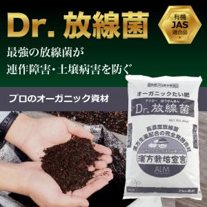 dr.放線菌