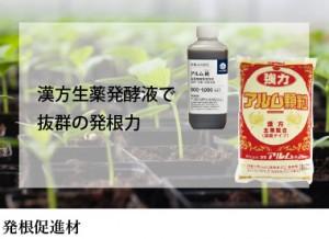 漢方生薬発酵液で 抜群の発根力 発根促進材